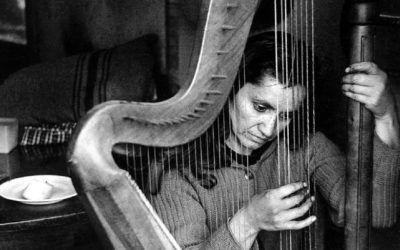 """""""Canto a la Diferencia"""" actividades en el centenario de Violeta Parra"""