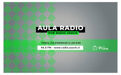 Música chilena en el aire: Aula Records estrena programa en Radio Usach